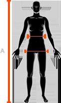 rozmiarówka damskich spodni x-bionic w pasie