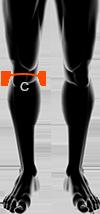 rozmiar spodni męskich xbionic w kolanach