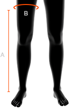obwody nogawek w spodniach damskich x bionic