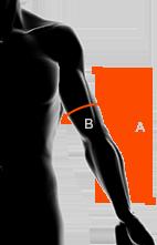 rozmiar męskich rękawów w odzieży x bionic